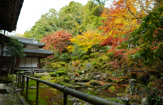ZEN EXPERIENCE<br>at famous Japanese pickles temple: Sukyoji