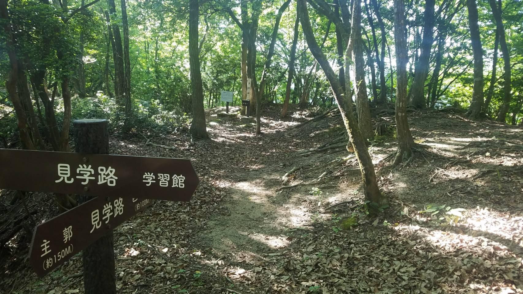 此隅山城跡 登山道