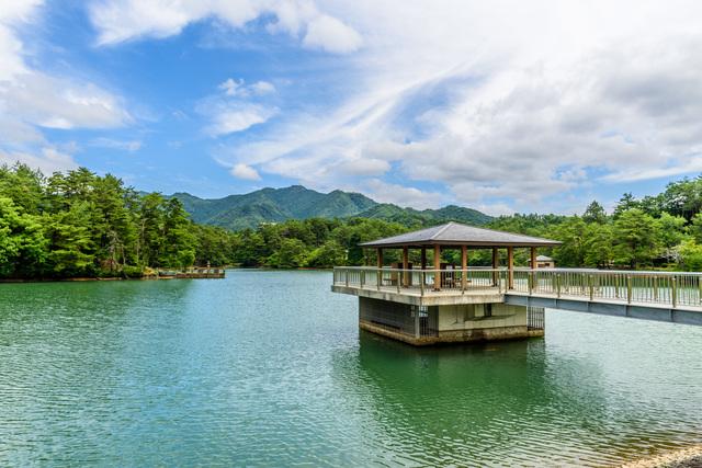 福知山 三段池公園